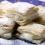 Milföylü Laz Böreği Tarifi